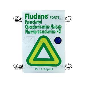 JUAL FLUDANE FORTE TAB 4S