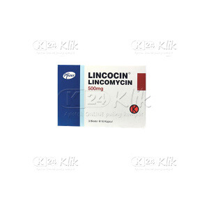 LINCOCIN 500MG CAP 30S