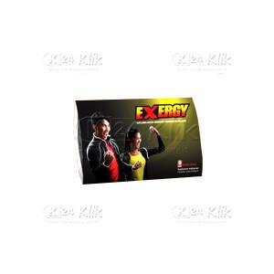 JUAL EXERGY TAB 4S