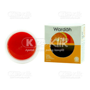 JUAL WARDAH LIP BALM ORANGE 6,5G
