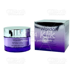 Apotek Online - WARDAH RENEW YOU ANTI AGING DAY CREAM 30GR