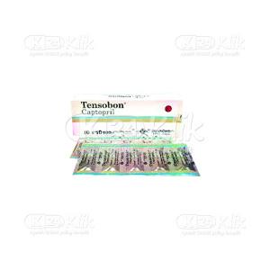 JUAL TENSOBON 25MG TAB 100S